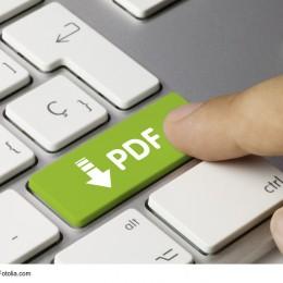 PDF Erstellung per Knopfdruck